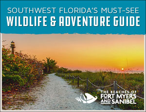 Southwest Florida's Must-See Wildlife + Adventure Guide