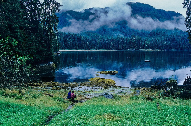 Keep Alaska's Tongass National Forest Roadless