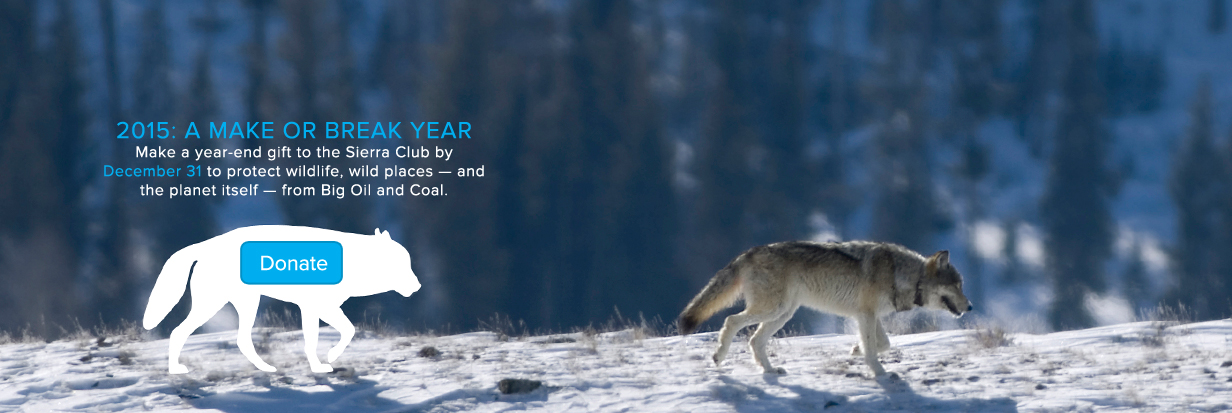 Help protect wildlife and wildlands -- make a gift to The Sierra Club!