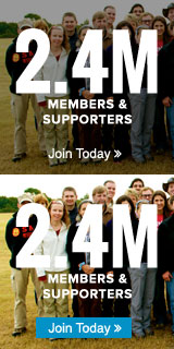 2.4 Members & Supporters