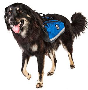 Alpha Dog Pack