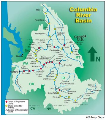 Best Chance To Save Wild Salmon In Columbia Basin Remove Four - Columbia river on us map