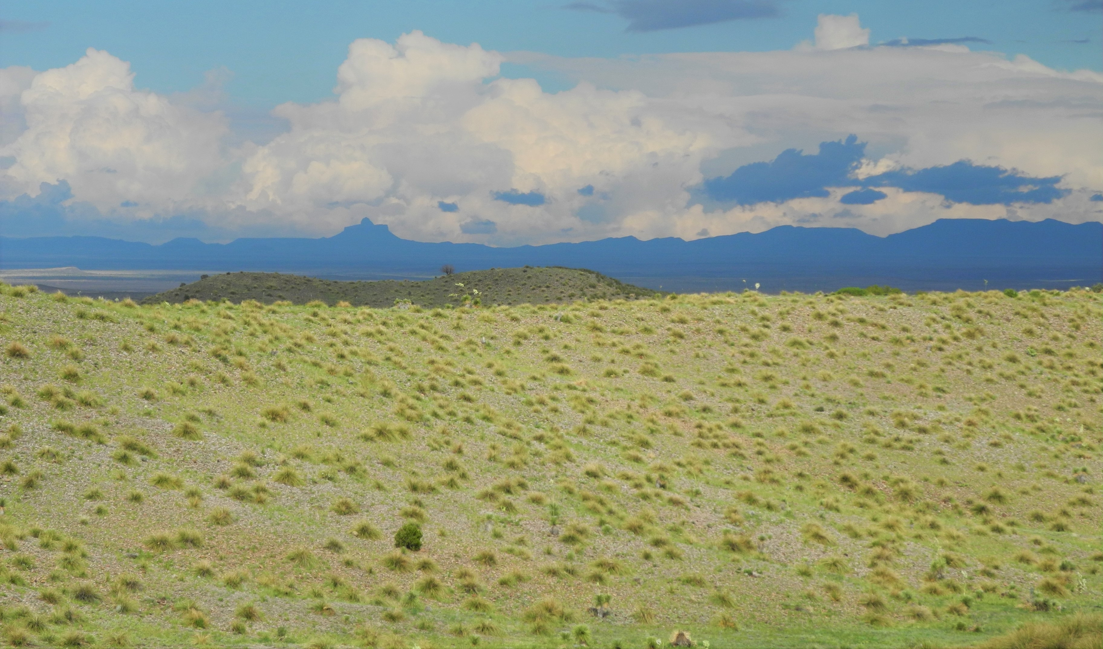 The Big Bend - A Photo Essay | Sierra Club