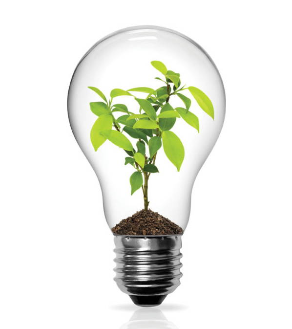 Iroquois Group Amp Community Partners Plan Earth Day Light Bulb Exchange Sierra Club