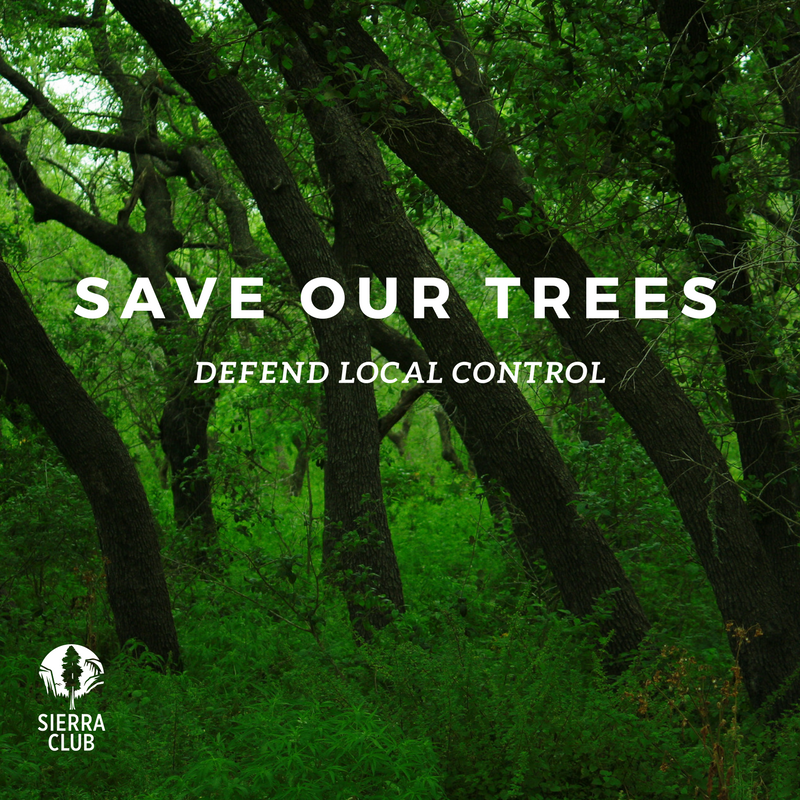 Texas lege special session recap tree lite bill passes but could texas lege special session recap tree lite bill passes but could have been worse sierra club sciox Choice Image