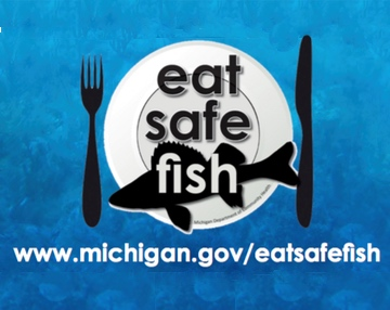 Safe fish guidelines sierra club for Safe fish to eat