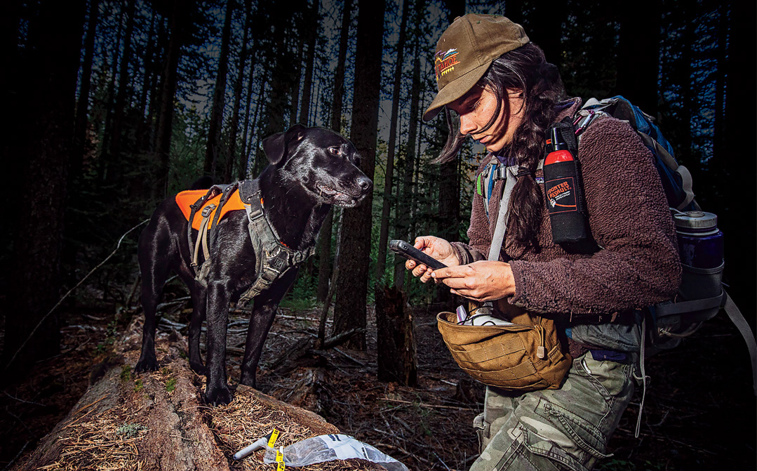 Conservation Dogs Sniff Out Endangered Species