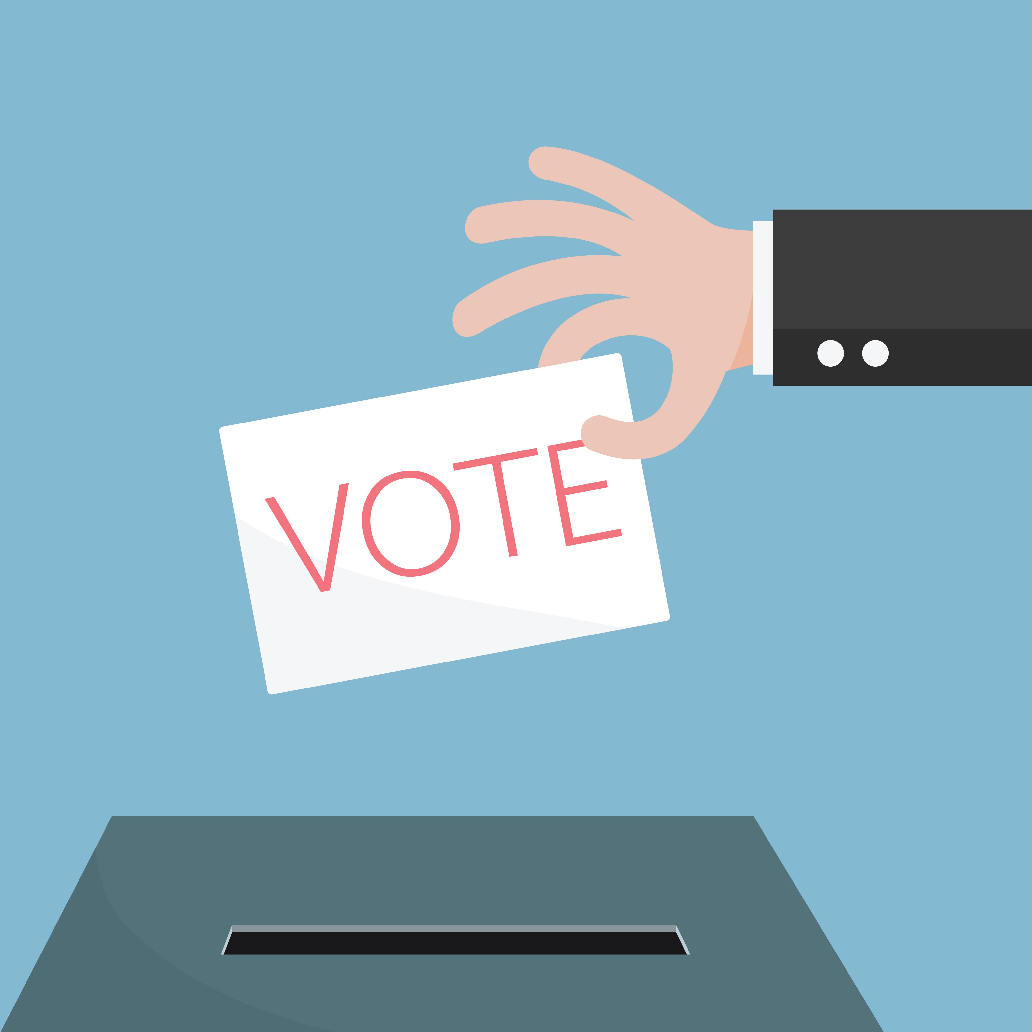 political referendum