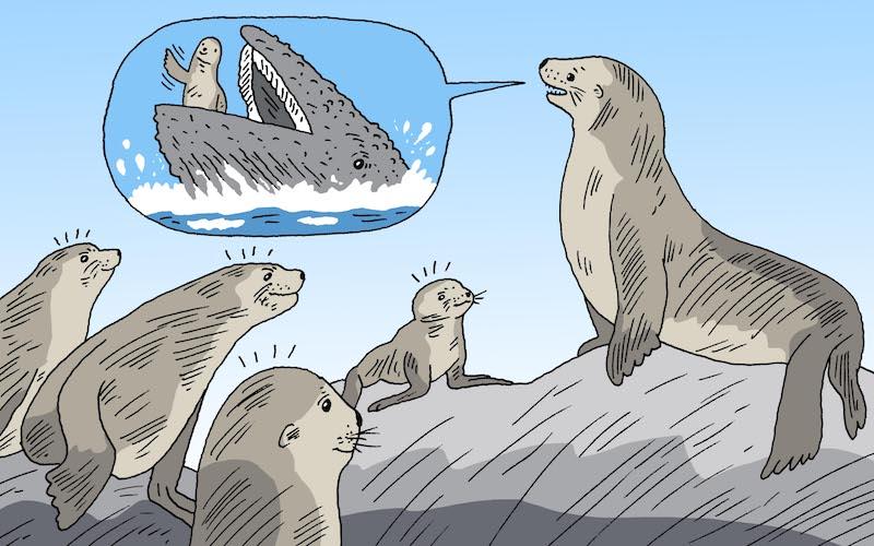 ICYMI: Jonah Seal, Greenland Melts, & Shooting at Bigfoot