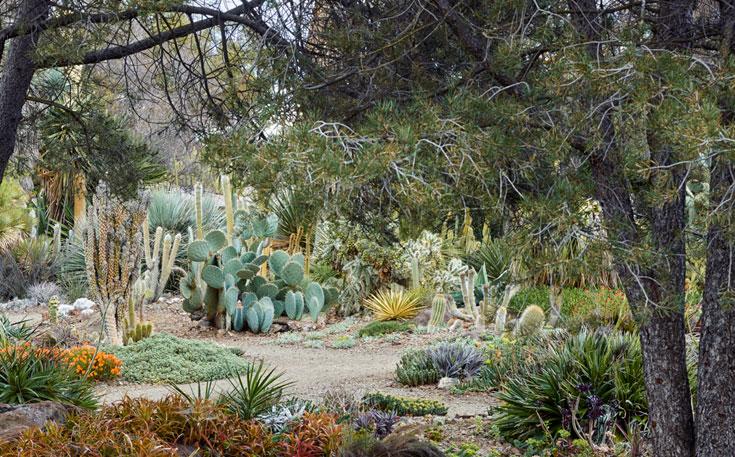 Front Shade Garden Plans
