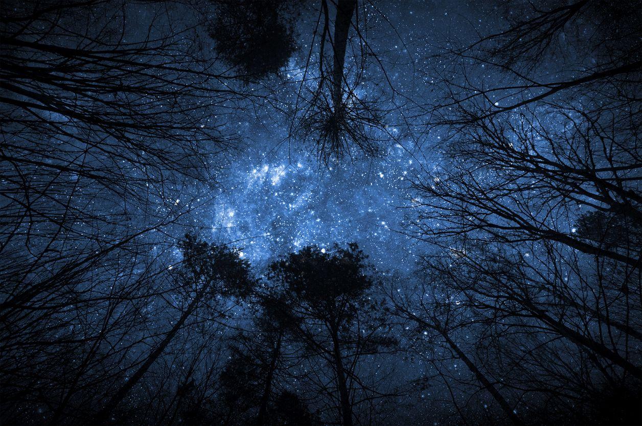 snowy night sky wallpaper
