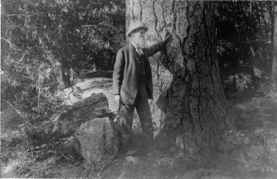 If John Muir could tweet, what would he say?