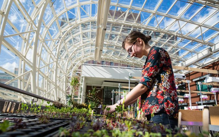 Students in a greenhouse.