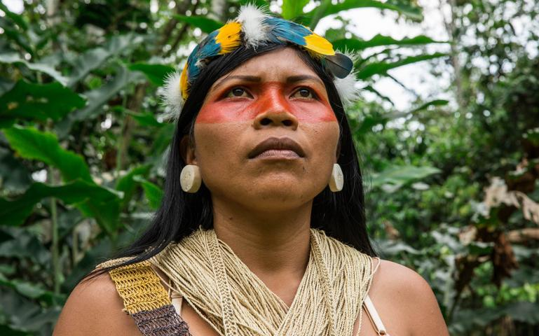 0368bc5760c Ecuador s Ceibo Alliance Offers an Antidote to Reckless Industrialism