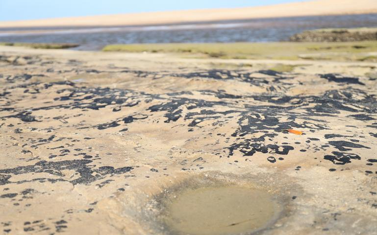 Oil Is Washing Up on Brazil's Beaches