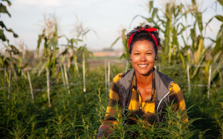 One Among Hemp's 25,000 Uses? Diversifying Commercial Agriculture