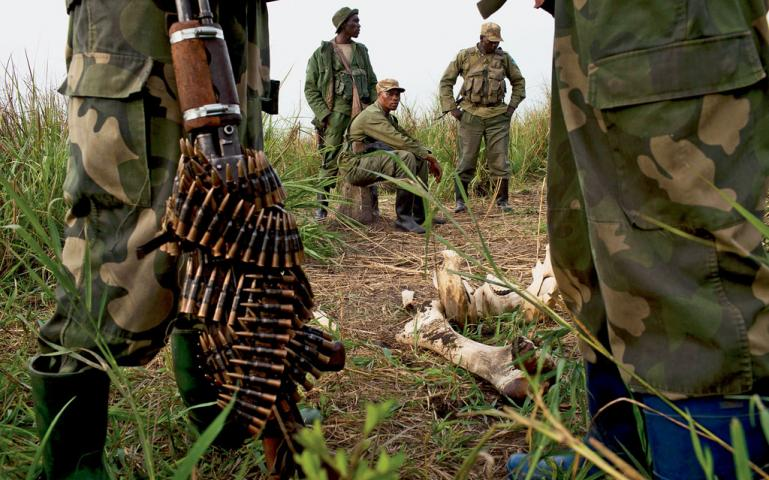 Anti-poaching rangers and Congolese soldiers patrolling Garamba National Park—too late for this elephant killed for its tusks.