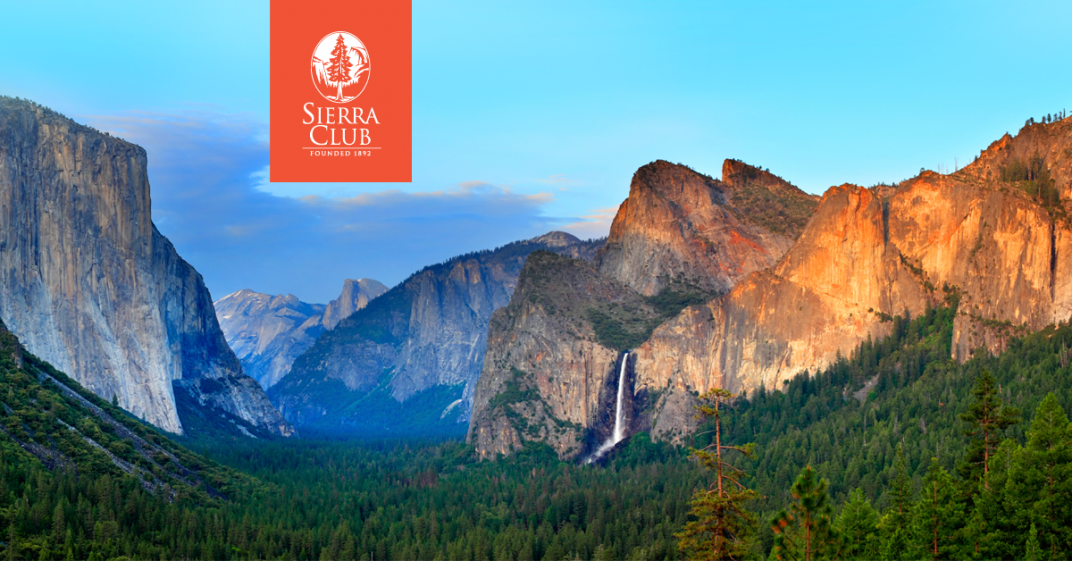 Sierra Club Welcomes Move to Protect Roadless Forests