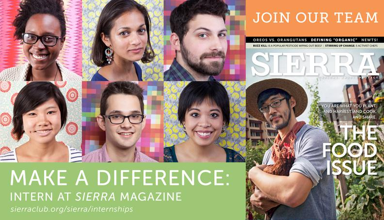 Be an intern at Sierra magazine