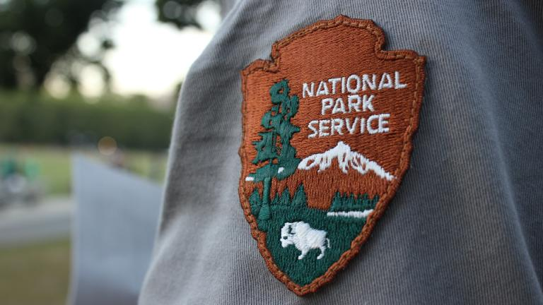 To celebrate the NPS Centennial, we partnered with the National Parks Service for a walk through the Back Bay Fens