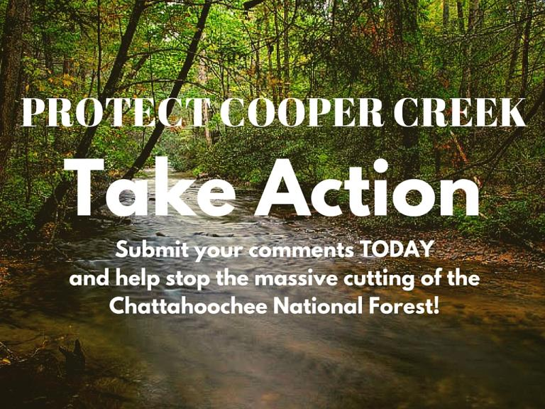 Stop The Massive Cutting Of The Chattahoochee National Forest!