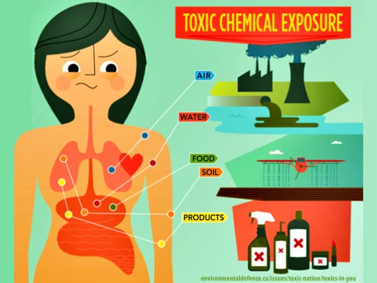Toxics in the Environment