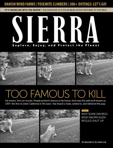 Sierra January/February 2015 cover