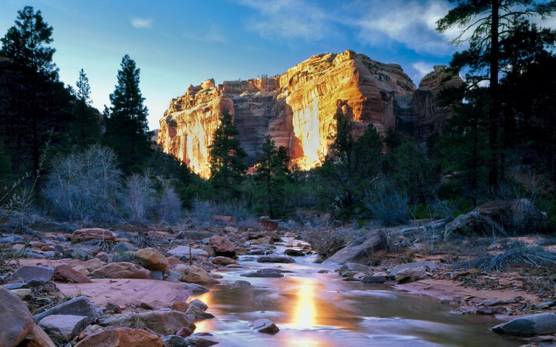 965ce2a0ac40 Land Grab  Trump s Campaign Against Bears Ears National Monument ...