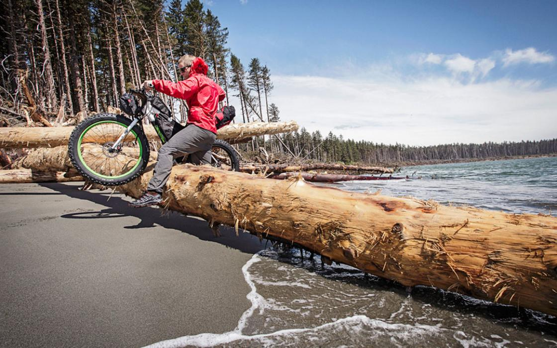 Storm-downed spruce pillars on the Lost Coast present cycling challenges.