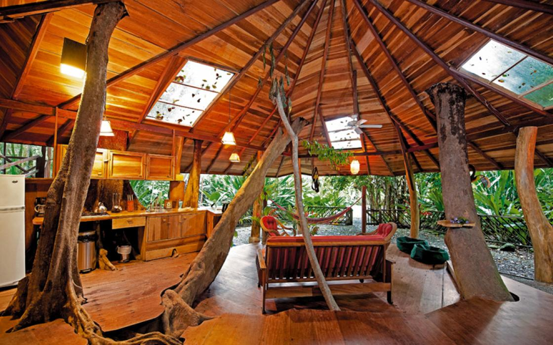 Delightful Treehouse Hotel In Oregon Part - 8: Tree House Lodge