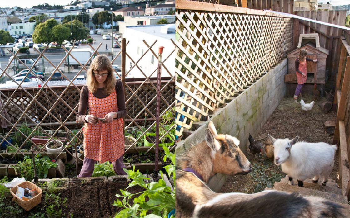 Heidi Kooy Adapted To San Franciscou0027s Hilly Topography By Constructing A  Terraced Farm.