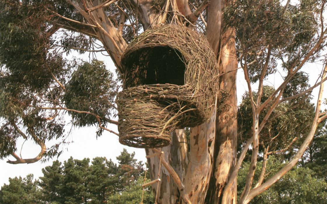 A treehouse called Weavers Nest, by Porky Hefer and Animal Farm in Cape Town South Africa.