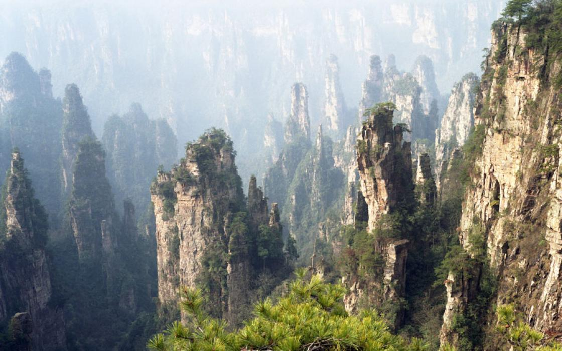 Years of erosion by vegetation and expanding ice carved Zhangjiajie National Park's narrow, terraced sandstone pillars, some of which climb over 650 feet.