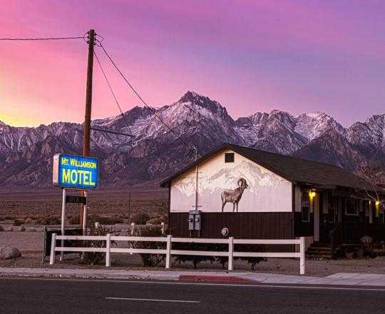 Mt. Williamson Motel in Independence, California, might be the only place in the world where you're guaranteed a glimpse of the Sierra Nevada bighorn sheep.