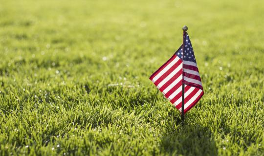 5 ways to green your 4th of July