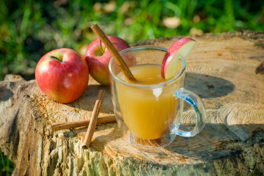 Beginner's Guide to Home Brewing: Hard Cider