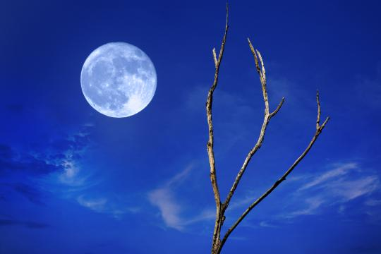 A Blue Moon (actual color varies) will occur at the end of July.