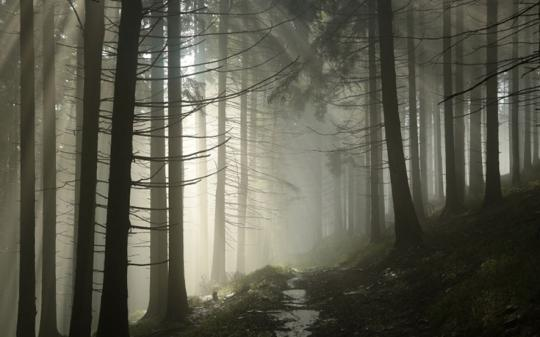 6 Haunted Hiking Trails -- Do You Dare?
