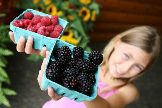 Green your kids' snacks with ecofriendly alternatives