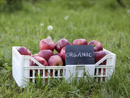 """Hey Mr. Green, what does """"organic"""" actually mean?"""