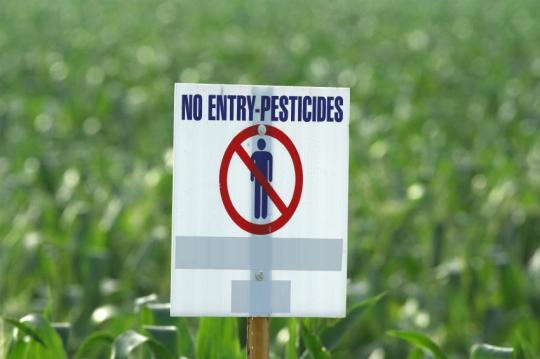 "The word ""pesticide"" is now commonly applied  both to herbicides and pesticides."