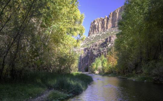 Aravaipa Canyon recovered after a 2006 flood shredded the desert oasis.