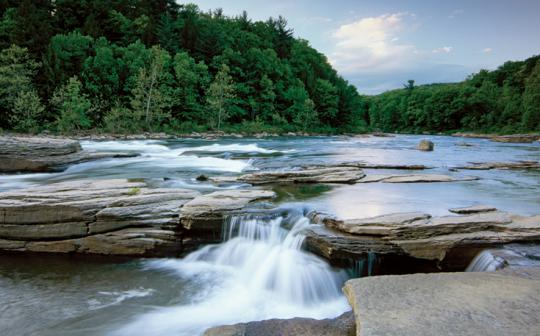 Youghiogheny River flows through the forests of Ohiopyle State Park, Pennsylvania.