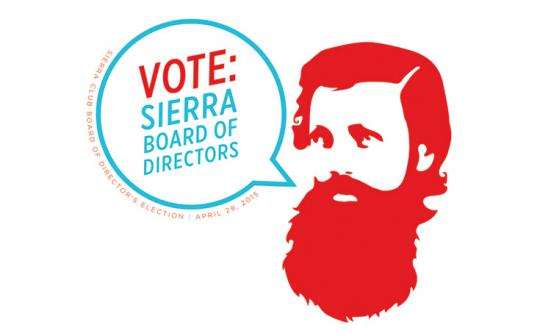 Each year, Sierra Club members elect 5 people to the 15-member, all-volunteer board of directors that governs the organization.