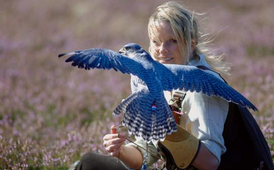 Emma Ford has written eight books about birds of prey and shares her home with 40 eagles, hawks, and falcons.