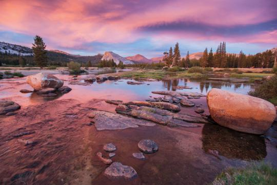 Tuolumne Meadows pink sunset