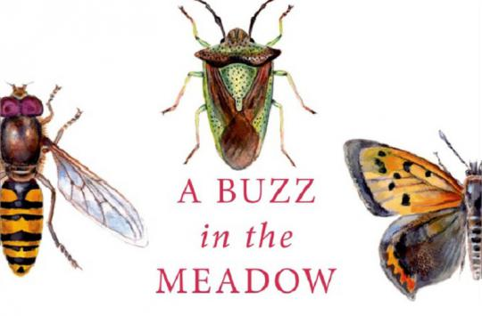 "We review ""A Buzz in the Meadow: The Natural History of a French Farm"" by Dave Goulson."