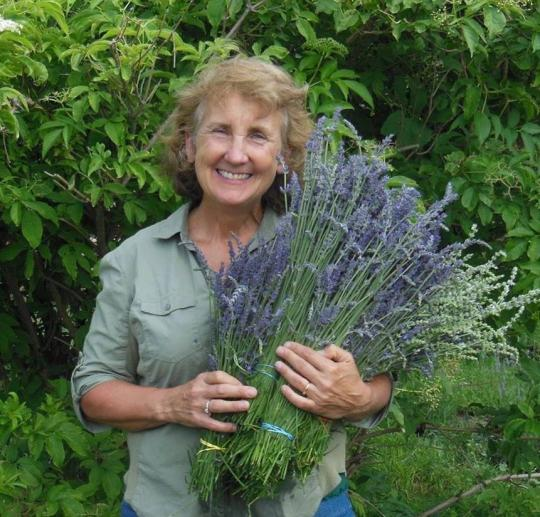 Cindy Jones, Owner, Colorado Aromatics, holds a lush bunch of lavender and smiles.