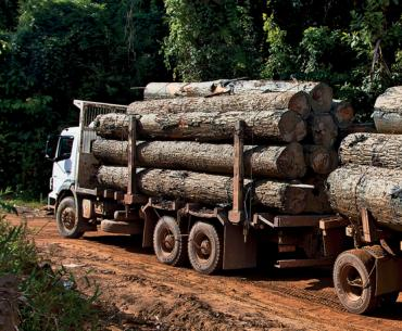 Logging Truck in Para StateA truck loaded with timber on the Curua-Una road after crossing the River of the same name, near Santarem, Para State.