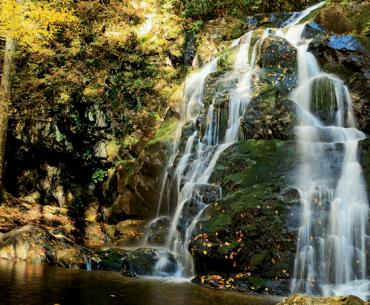 Spruce Flats Falls, Great Smoky Mountains National Park
